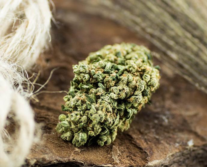 How to use dried CBD hemp?