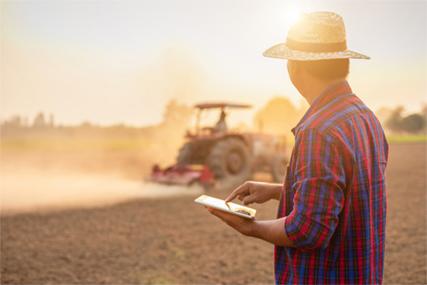 HempKing Rolnictwo
