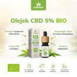 olejek bio cbd 5% właściwości