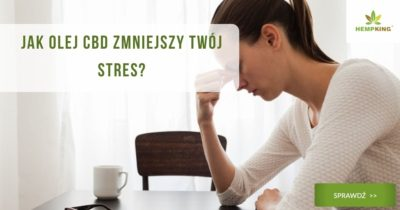 Jak olej CBD zmniejszy Twój stres_