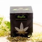 herbatka-piramidki