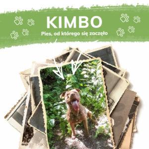 Kimbo historia Hempking