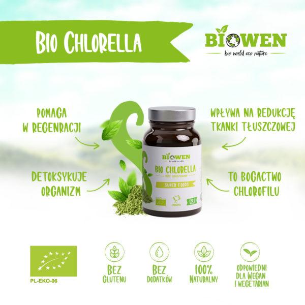 chlorella wizualka