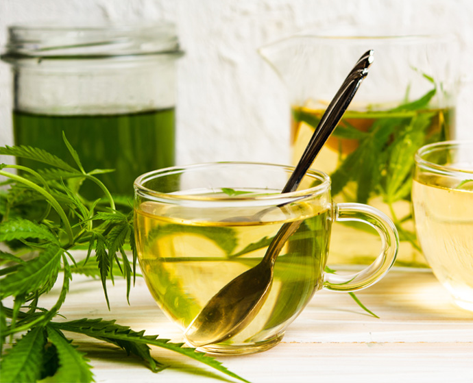 Jak parzyć herbatę CBD?